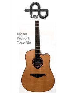 Andrea Pistilli - LAG HyVibe THV30DCE - Digital Tone based on