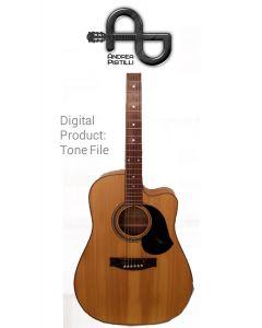 Andrea Pistilli - Maton ECW80C - Digital Tone based on