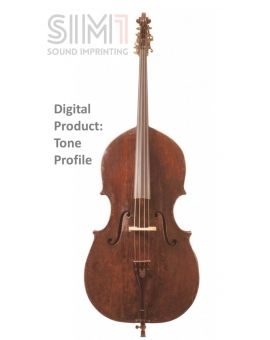DoubleBass Acoustic