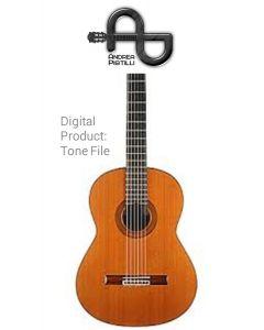 Andrea Pistilli - Bernabe (For Nylon Strings Source Guitar) - Digital Tone based on