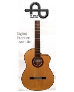Andrea Pistilli - Cordoba GK  (Flamenco Model - For Nylon Strings Source Guitar) - Digital Tone based on