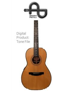 Andrea Pistilli - ValleyArts Larry Carlton 000 Prototype - Digital Tone based on