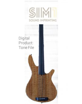 Rob Allen MB 2 Fretless - Digital tone based on